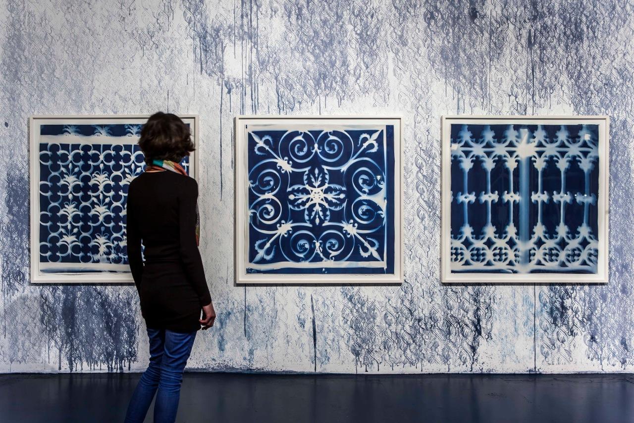 FLORA NATIVA - exhibition view